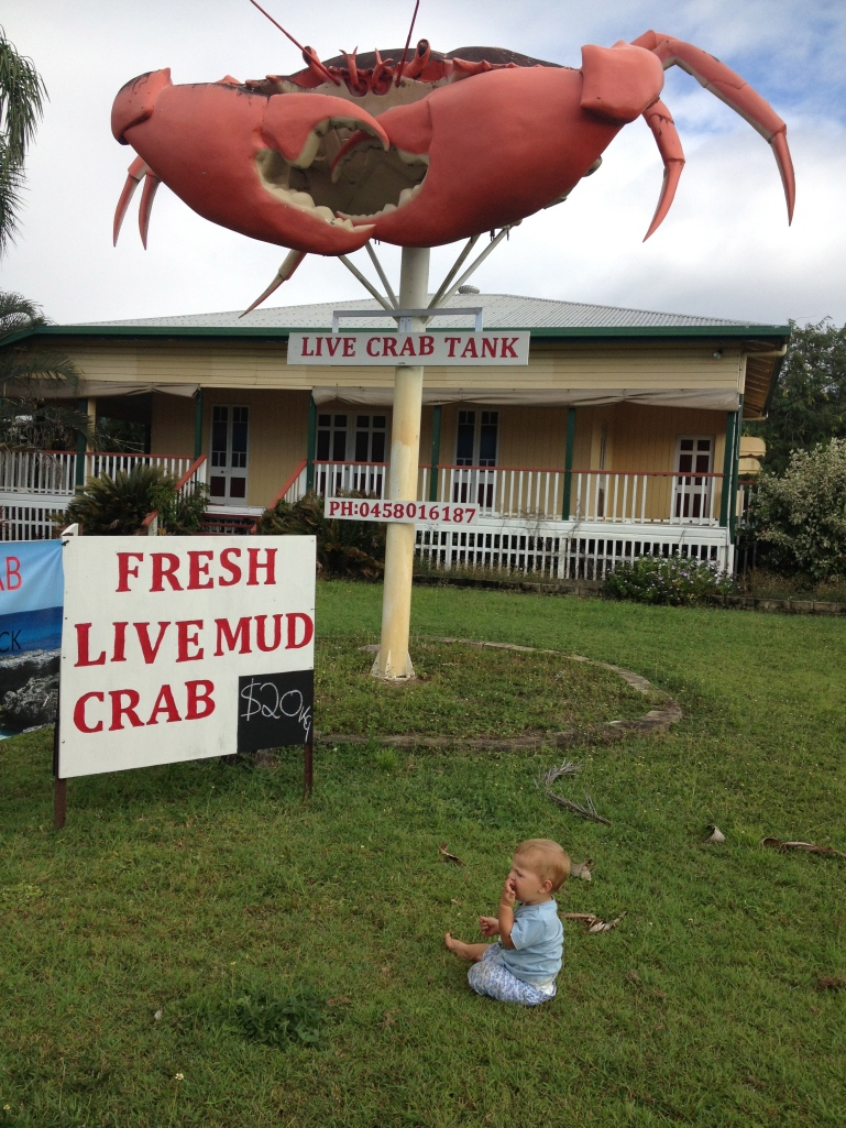 The Big Crab - Cardwell