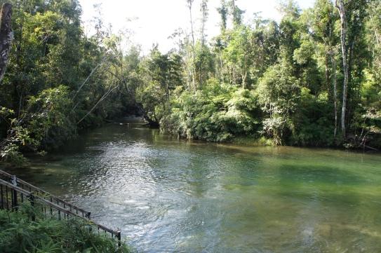 Alligators Nest waterhole