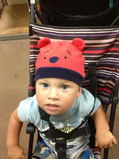 Bodhi bear